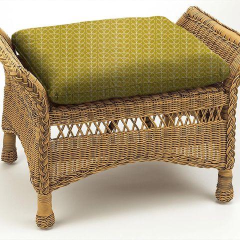 Linear Stem Dandelion Box Cushion