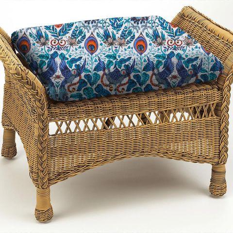 Amazon Blue Box Cushion